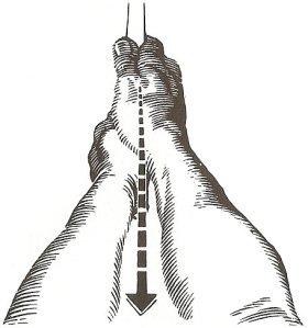 Chữ V của bàn tay phải hướng đến cằm